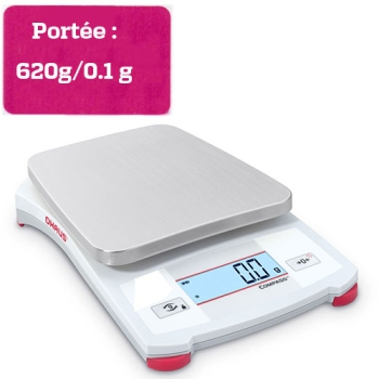 BALANCE PORTABLE COMPASS - Portée 620 g