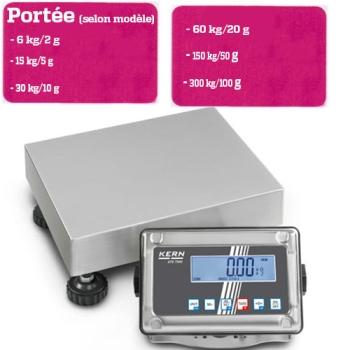 BALANCE PLATE FORME - PORTEE 6 A 300 KG selon modèle