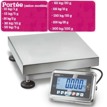 BALANCE PLATE FORME - PORTEE 10 A 300 KG selon modèle