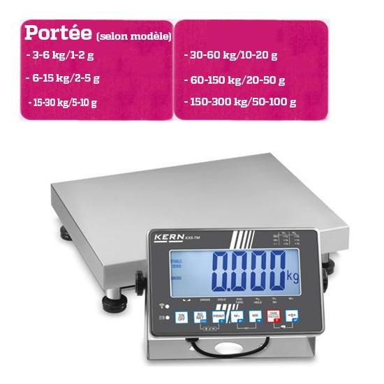 BALANCE PLATE FORME - PORTEE 3-6 A 150-300 KG selon modèle